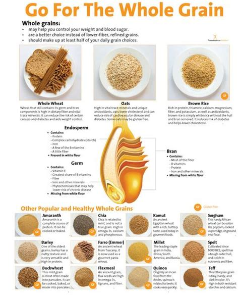 whole grains in food go for the whole grain poster 16 99 nutrition