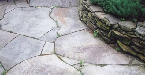 How To Remove Weeds Between Patio Stones by Escapes Custom Masonry Weeds Between Pavers Weeds