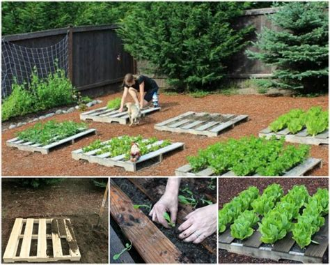 Pallet Ideas For The Garden Recycled Pallet Gardening Ideas Recycled Things