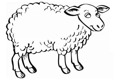 sheep coloring page size page sheep coloring pages