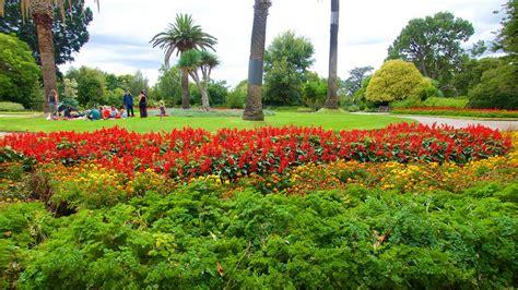 st botanic gardens st kilda botanical gardens in st kilda expedia