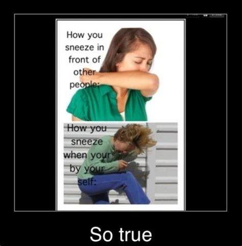 Sneeze Meme - sneeze meme memes