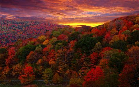 hd change  seasons wallpaper