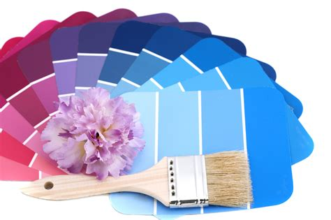 house painting colour solutions