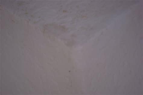 schimmel an wand entfernen schimmel entfernen an wand und decke eigenheim abc
