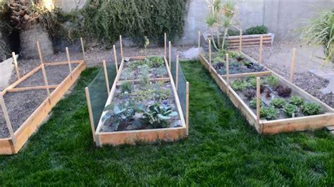 Raised Garden Beds   Vegetable Garden in Phoenix, Arizona