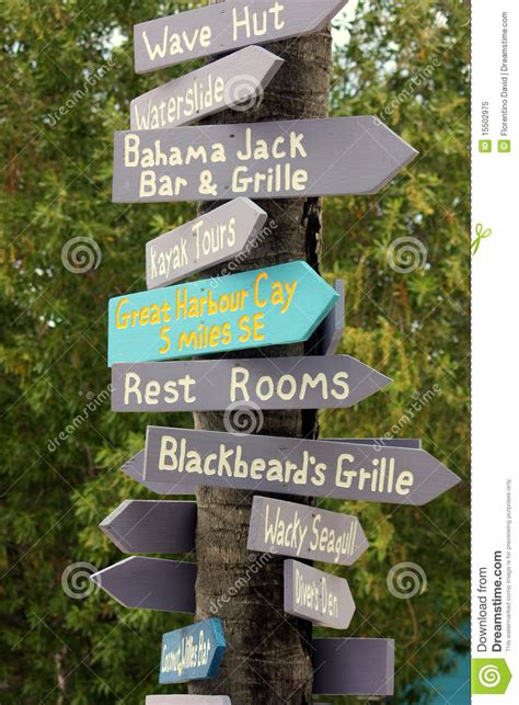 time trees directions palm tree directions royalty free stock photo image