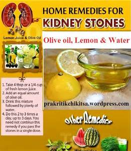 home remedy for kidney stones pankajsharma28jan1964 page 33 prakritikchikitsa