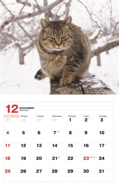 88 imperatives for 2018 books 猫カレンダー のら 2016 岩合光昭 hmv books 9784777815203