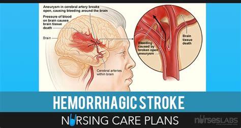 Herbal Carefor Stroke nursing care plan nursing care and care plans on