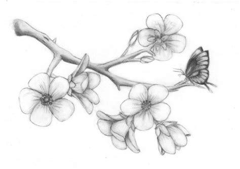 sketsa gambar bunga sakura hitam putih