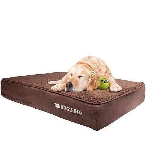 bed for dog 25 best rated dog beds for large dogs 2017 pet life today