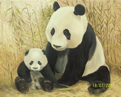 imagenes animales extraños imagenes del oso panda los osos panda chinos estn en