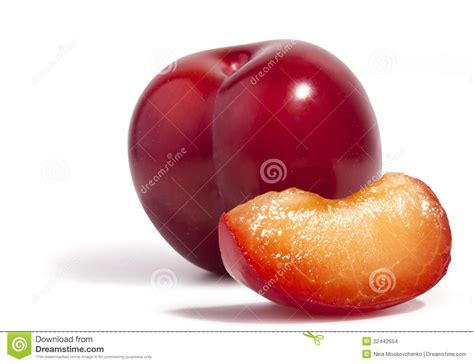 fruit similar to fruit similar to apricot wordreference forums