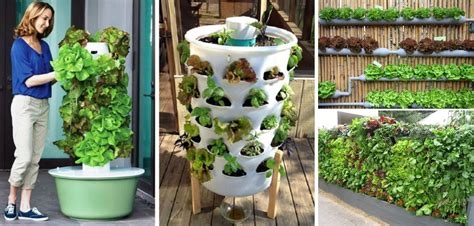20  Vertical Vegetable Garden Ideas   Home Design, Garden