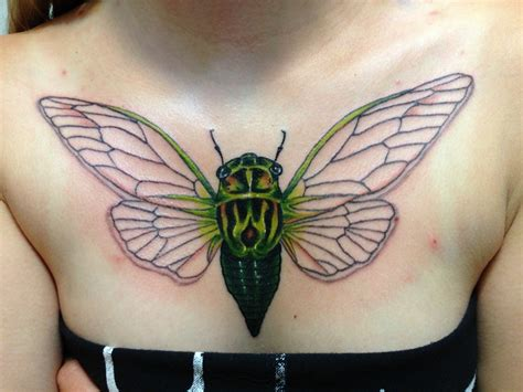 lotus tattoo fredericton 1000 images about cicadas on pinterest dog day