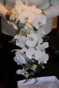 orchid bouquet kathleens florist blackpool white phalaenopsis orchid