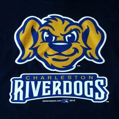 river dogs charleston riverdogs charleston riverdogs youth bp logo navy