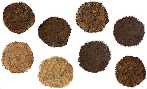 types of garden soil image gallery soil types