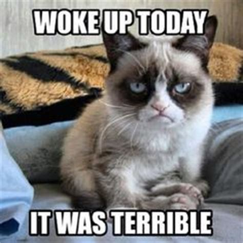Grumpy Cat Good Morning Meme - 1000 images about grumpy cat on pinterest funny grumpy
