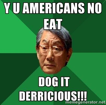 Asian Dog Meme - the 10 most common asian stereotypes