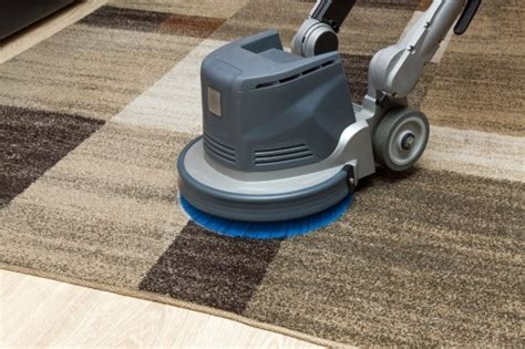 upholstery cleaning pensacola fl carpet cleaning company pensacola fl neal s carpet