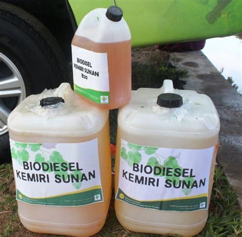 Minyak Kemiri 1 Liter lipsus 10 biodiesel kemiri sunan bebeja