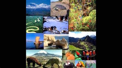 imagenes de recursos naturales vivos los recursos naturales y sus bienes econ 243 micos youtube
