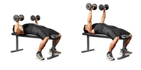 90 pound dumbbell bench press flat bench press with dumbbells o melhor treino de peito