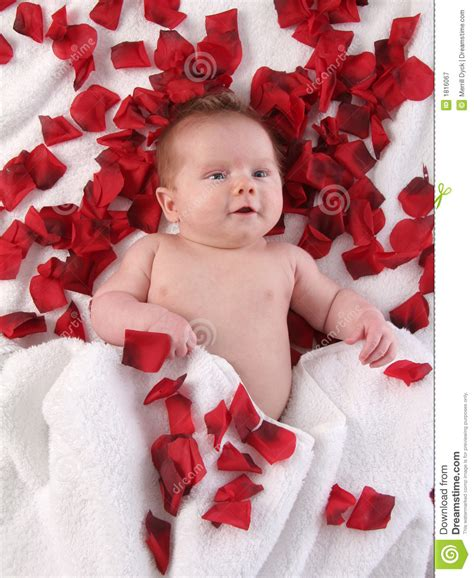 valentines for baby valentines baby royalty free stock photography image