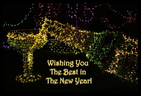 all the best in new year wishing you the best in the new year by teaphotography on