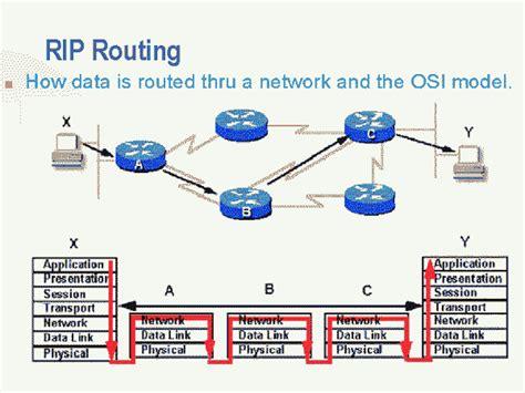 rip diagram rip network infrastructure wiki fandom powered by wikia