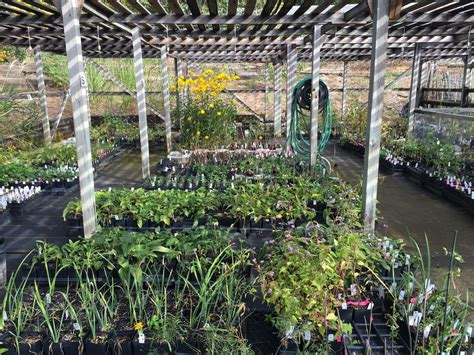 Birmingham Al Botanical Gardens Fall Plant Sale Returns To Birmingham Botanical Gardens This Weekend Al