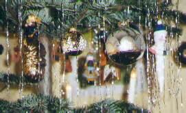 garten 2000 weihnachtsbaum weihnachten bei uns
