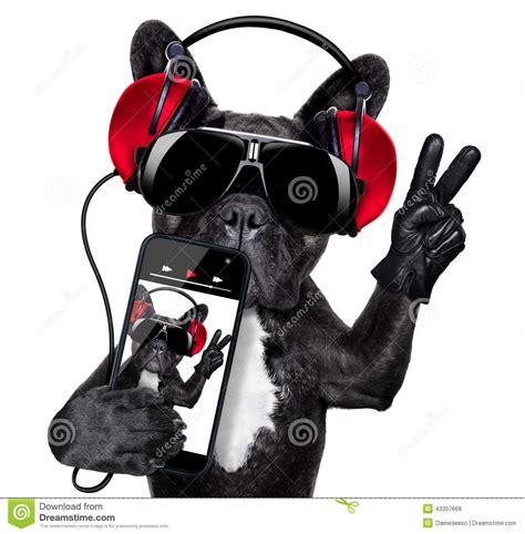 djs dogs dj stock photo image 43357668