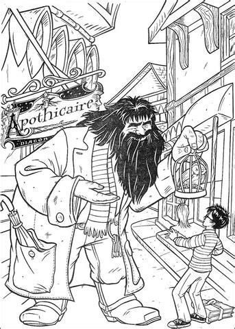 harry potter hagrid coloring pages ausmalbild hagrid bietet harry potter einen papagei an