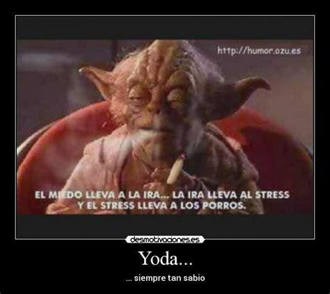 Memes De Yoda - yoda memes y desmotivaciones taringa