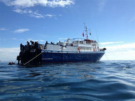 dive boat calboat diving spectre dive boat ventura 2018 all