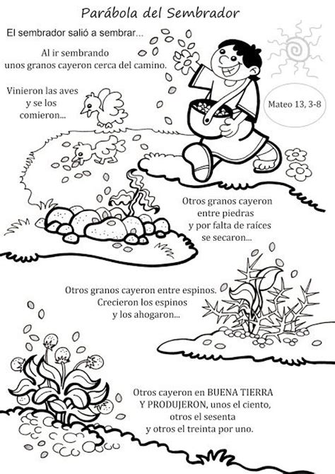 pdf libro de texto botanical drawing in color descargar la catequesis recursos catequesis par 225 bola del sembrador clases y actividades biblicas