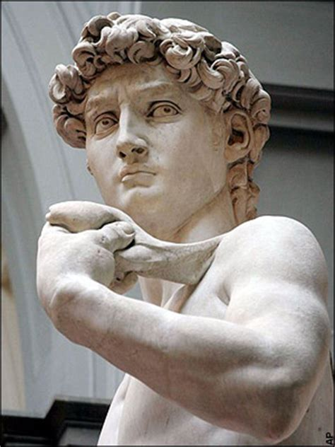 michelangelo s david a humanist symbol thehumanist com creation meanings intent truth hallee the homemaker