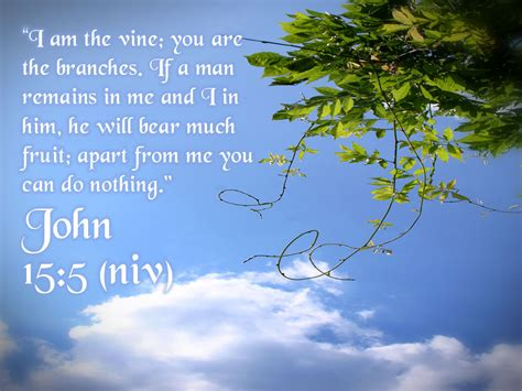 appart from john 15 5 apart from me you can do nothing wallpaper christian wallpapers and