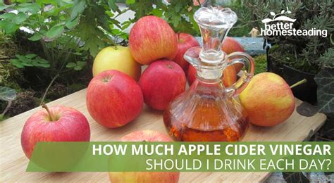 How Much Apple Cider Vinegar Per Day For Detox how much apple cider vinegar should i drink each day