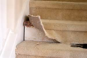 Cost Of Carpeting Stairs by Beautiful Budget Stair Remodel From Carpet To Wood Treads