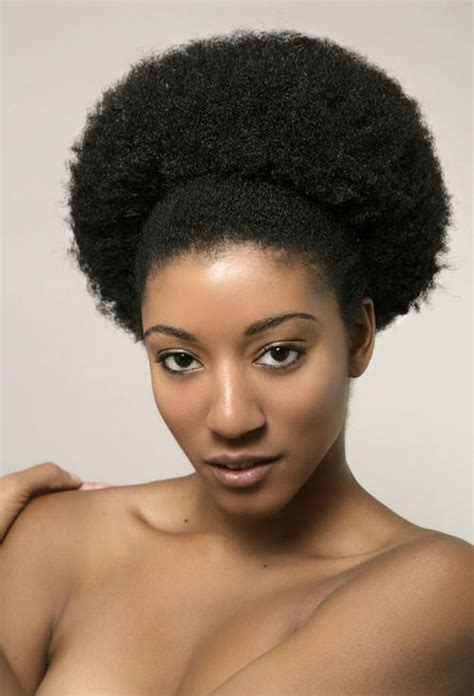 pinterest natural hair afro puff jpg 700 215 1029 4c natural hair beauties