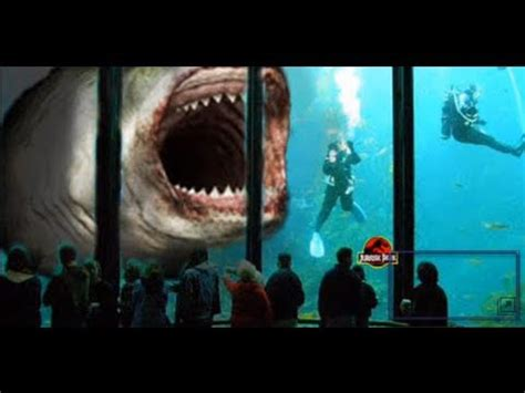 megalodon sharks still lives evidence that megalodon is not extinct megalodon giant shark 60 ft doovi