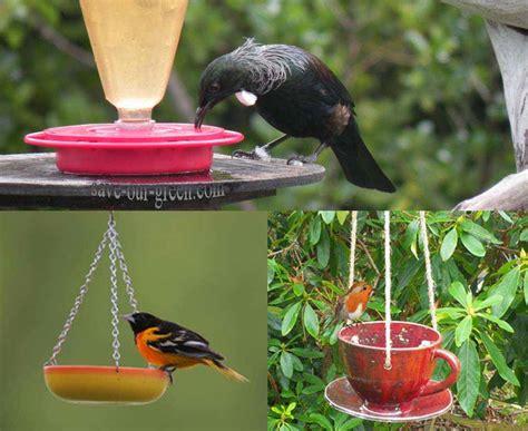 homemade bird feeder save our green