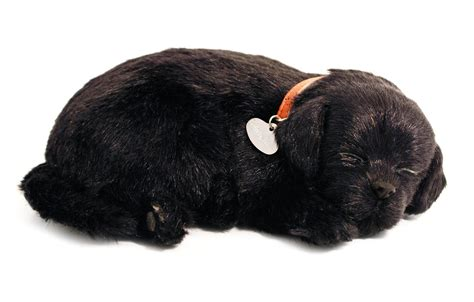 breathing puppy petzzz black lab breathing puppy in bed ebay