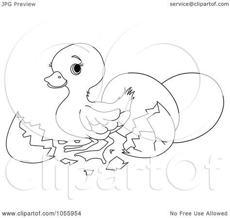 duck hatching coloring page easter coloring pages duck hatching coloring page