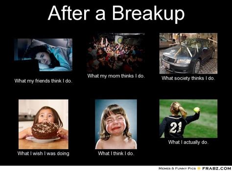 Funny Breakup Memes - after a breakup what people think i do what i really do