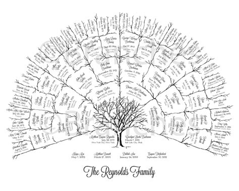 history and genealogy of a branch of the weaver family classic reprint books best 25 family tree designs ideas on family